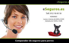 Nuevo Comparador de Seguros de Perros en www.eSeguros.es