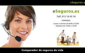 Nuevo Comparador de Seguros de Vida en www.eSeguros.es